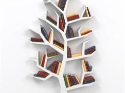 Mijn favoriete OOL boeken
