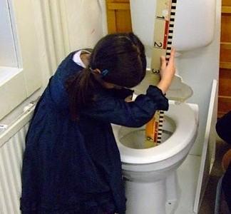 Een toilet in de klas kleuterjuffen stimuleren ontdekkend leren wetenschapsknooppunt zh for Wc ontwikkeling