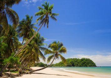 tropisch eiland klein